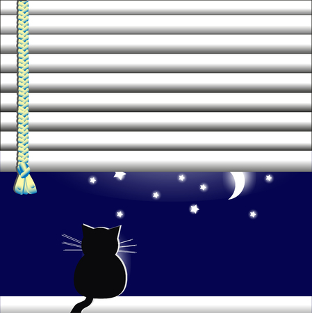Cat in the window looking at the moon and stars