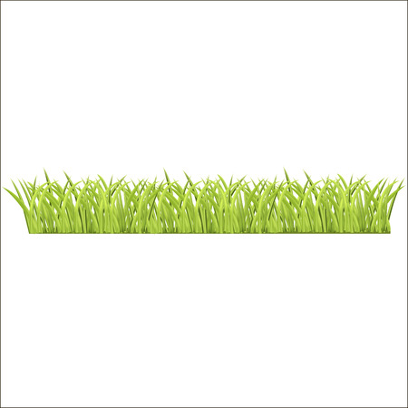 row of fresh green grass for you