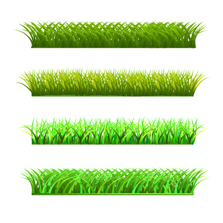 set of four rows of fresh grass
