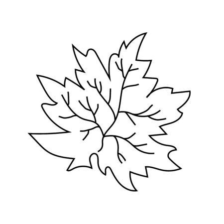 Tree leaf. Maple Autumn. Vector illustration Иллюстрация