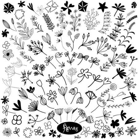 Set of hand drawn doodle flowers, leaves and branches. Isolated on white background. Vector stock illustration.