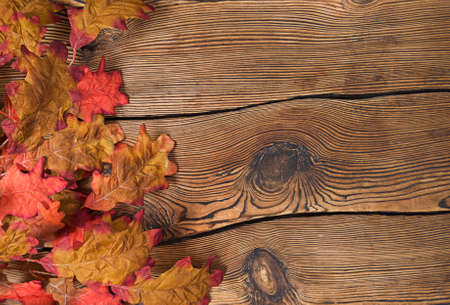 Colorful autumn leaves on a brown wooden background. 免版税图像
