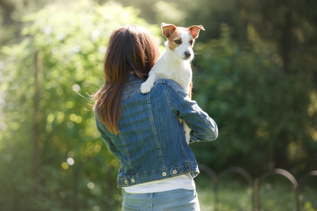 The girl with the dog in her arms. A little Jack Russell Terrier. Summer day Stock Photo