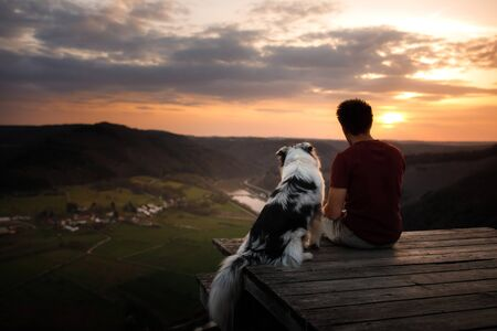 A man with a dog at sunset. walk with a pet. Australian Shepherd and owner in nature look at a beautiful view Banque d'images