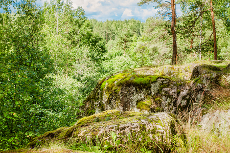 moss on the ancient stone in Karelian forest