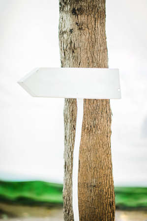 Wooden signboard installed in nature. White Decorative sign on a stick
