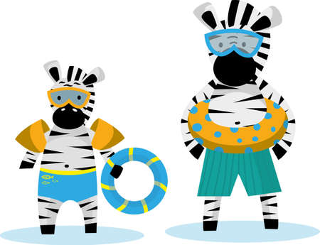 Zebra Papa and zebras little go swimming with swimming ring and swimming goggles. Cute animal character for children, cartoon clip art isolated on white. Vector image.