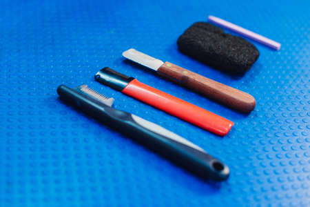 Acessories for the grooming and nail clipper for cats and dogs. The concept of advertising grooming and caring for dogs. Tools for trimming and plucking wool dogs