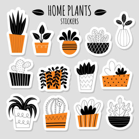 Vector set of thirteen stickers with stylized indoor plants. Potted flowers. House gardening. Catus, succulent, Sanseviera, dracaena. Flat vector illustration on a light background. Illustration