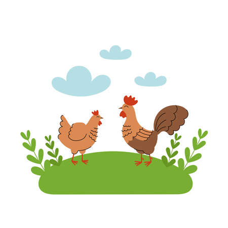 Cute hen and rooster stands in the meadow. Cartoon farm animals, agriculture, rustic. Simple vector flat illustration on white background with blue clouds and green grass. 免版税图像 - 151402548
