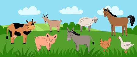 Farm animals on green meadow. Collection of cartoon cute baby animals and birds. Cow,sheep,goat,horse,donkey,pig, chicken,rooster,goose. Summer rural landscape,field,banner.Flat vector illustration