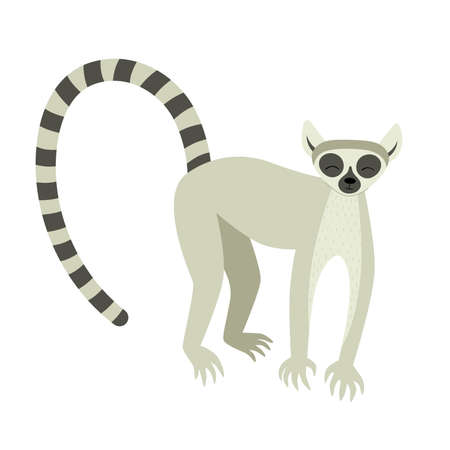 Exotic cute lemur. Animals of Madagascar and Africa. Vector children illustration in flat style