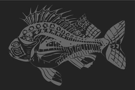 Carp fish grey on a dark grey background