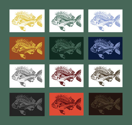 Carp fish collection colored