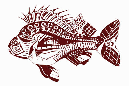 Carp fish dark red Illusztráció