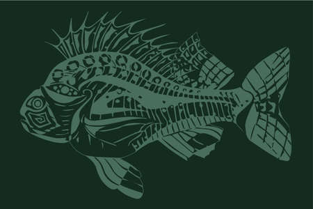 Carp fish green on a dark green background