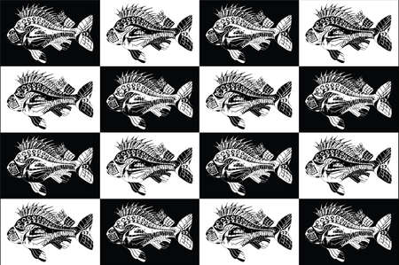 Carp fish collection black and white Ilustracja