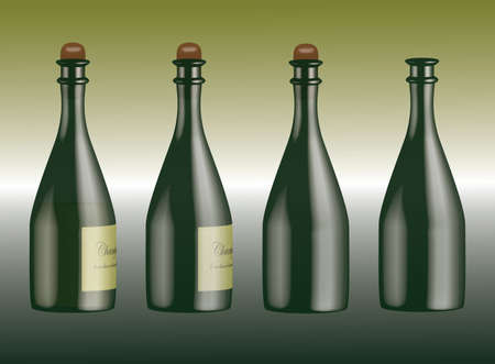 Collection of champagne bottles with white vine and cork, without wine but with cork and empty bottle