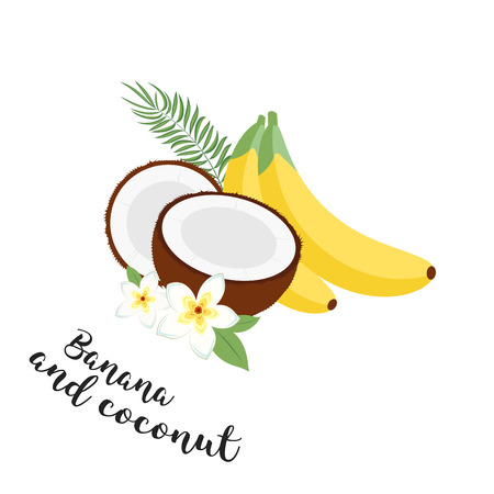 Funny fruit set. Bananas, coconuts and leaves. Set of Vector Illustration Icons tropical fruits with leaves and flowers. Set of vector trendy illustrations isolated on white Illustration