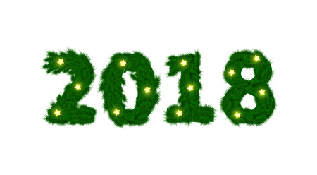 New Year 2018 of fir branch and light garland on white illustration.