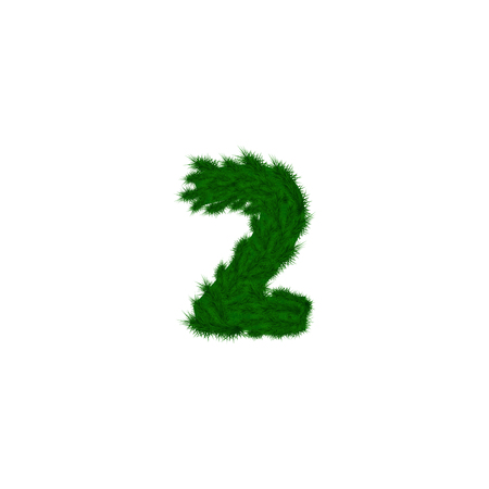 numbers decorated with pine branches. Number- 2. Two