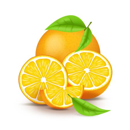 Juicy orange with slice and leaves. Fresh citrus fruits whole and halves isolated vector illustration. 3D isolated on white background