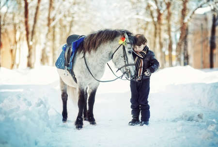 horse in snow: Horse and Jockey - Little child boy and  pony Stock Photo