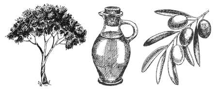 Hand drawn olive set Stock Photo