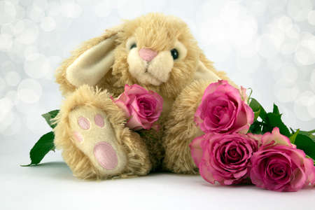 Fluffy bunny with pale pink roses and diffused background. photo
