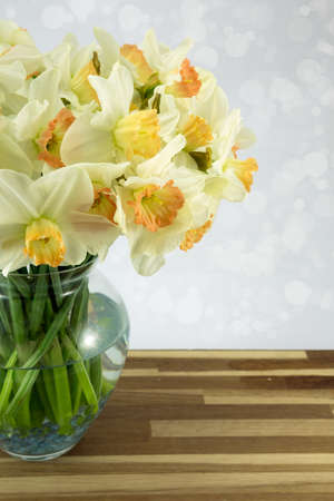 Daffodils in a glass vase. photo
