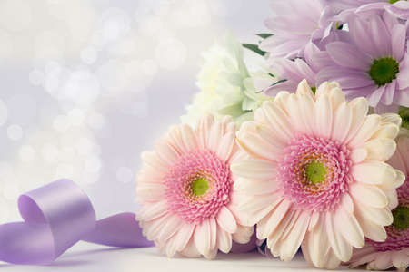 Pink Gerbrea daisies with a purple ribbon. photo