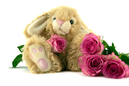 Fluffy Bunny with pink roses  photo