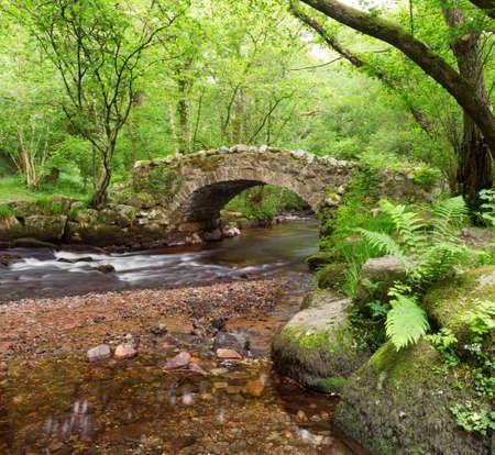 Hisley Bridge,Hisley wood,Dartmoor Devon Uk  版權商用圖片