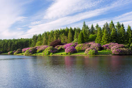 Kennick Dartmoor national park Devon Uk photo