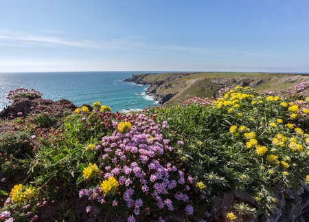 south west coast path: South percorso costa occidentale vicino Bedruthan Cornovaglia Regno Unito