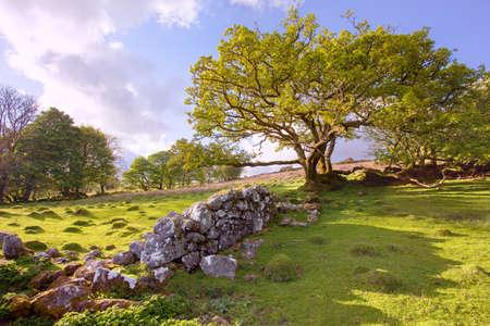 English landscape view Stock Photo