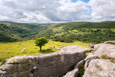 View from Bench Tor up The Dart Valley Dartmoor Devon UK