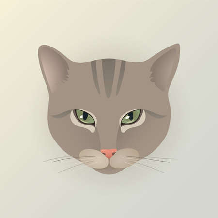 dodgy: Portrait of a lady striped cat. Cute characters cat in japanese style. Dodgy cat. Angry cat. Flat minimal design style with pastel gray color. Cartoon vector illustration. Illustration