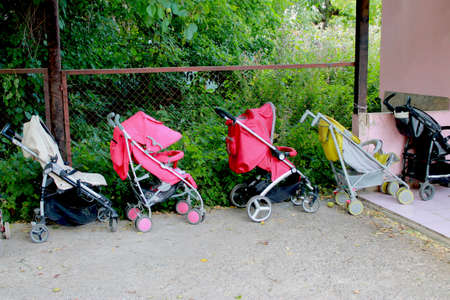 empty strollers are standing by the fence in summer