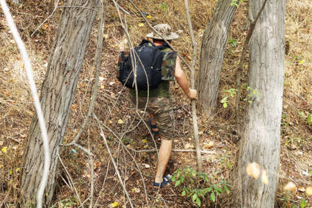 a man with a backpack climbs the mountain between the trees, back view