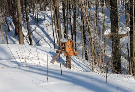 wooden bird feeder with seeds in winter forest in sunlight