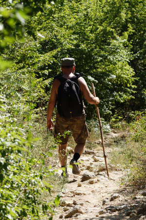 A man with a backpack and a walking stick is walking along a trail in the forest, traveling alone. Hiking trip. Standard-Bild
