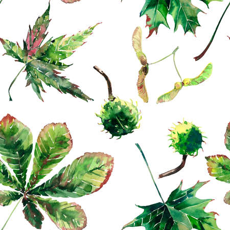 Beautiful wonderful graphic bright floral herbal autumn green maple chestnut leaves  and chestnuts pattern watercolor hand sketch. Perfect for textile, wallpapers, wrapping paper