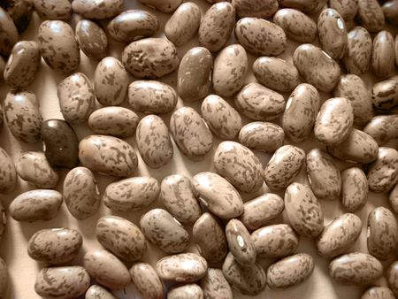 haricot: Texture of dry haricot beans