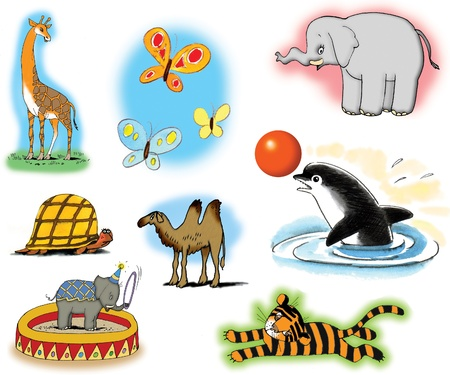 Raster illustrations about different wild animals. On white background. illustration