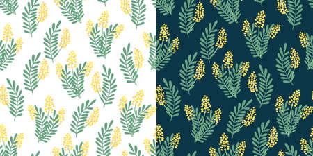 Two vector seamless patterns with nice mimosa flowers and leaves on white and dark. Great for fabrics, especially for linens, wrapping papers, wallpapers, covers. Hand drawn flat illustration.