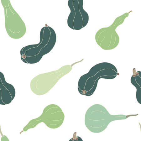 Vector seamless pattern with green squashes and gourds on white background. Great for fabrics, wrapping papers, wallpapers, covers. Autumn farming garden theme.