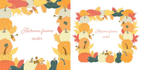 Set with Autumn square frames with pumpkins, acorns and colorful leaves. Hand drawn vector illustration isolated on white background. Crop or harvest theme. Warm honey colors. Flat style with lines.