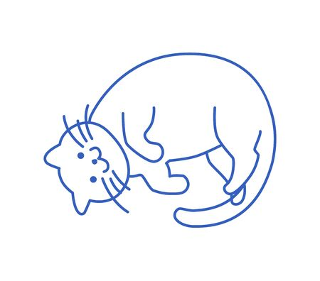 Happy, the cat is lying on its back. Isolated, line, icon, vector hand drawn illustration.