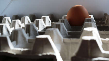 blurred foreground of a cardboard box with cells and one brown egg in focus in the background, food industry as a single product in its original packaging, chicken egg in a cardboard container Banco de Imagens